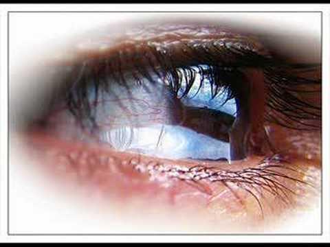 Tears of the Saints - Leeland