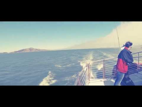 Sailing SF Bay