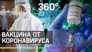Побороть коронавирус на генетическом уровне пытаются ученые Подмосковья