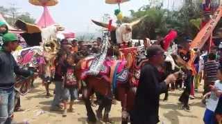 Download Video Kuda Renggong Bandung Culture Folklore Mandalajati 2015 MP3 3GP MP4