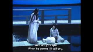 Puccini - Madama Butterfly Act III