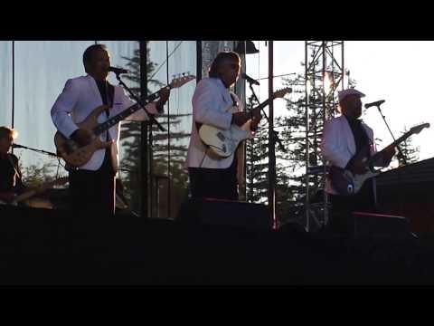 THE ASSOCIATION(LIVE VIDEO CLIP)-