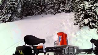 Timber Sled Snow Bike