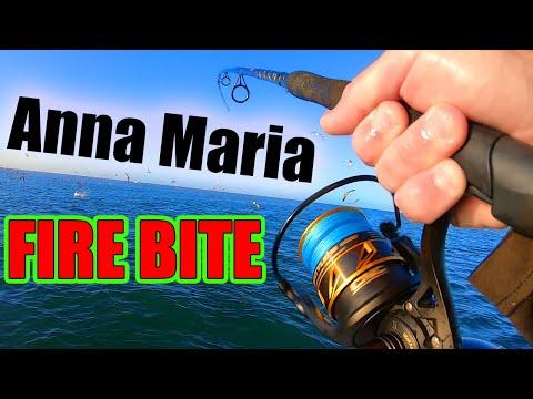Solo Fishing Trip - Drag Screaming Action FIRE BITE - (Anna Maria Island, Florida Fishing)