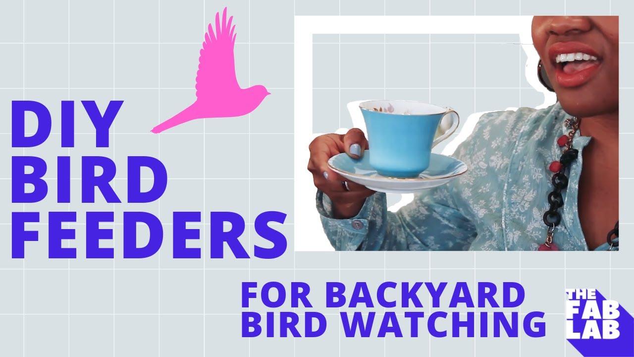 kids science project diy bird feeders for backyard birdwatching