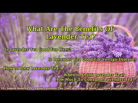 10+ Superb Benefits Of Orginal Lavender Tea: Uses, Warnings & More