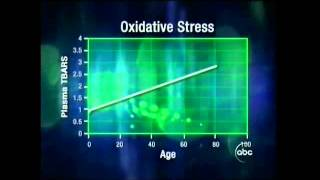 National Institutes of Health Confirms Protandim Slows the Aging Process in Humans by 40-70%