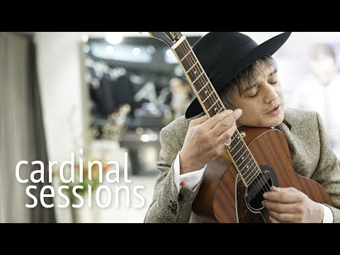 Peter Doherty - Who's Been Having You Over - CARDINAL SESSIONS