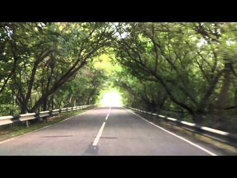 Дорога в Аркадаке. Мост.