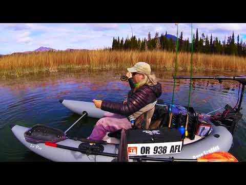 Dave Scadden's Detonator Lo Pro Fish Paradise