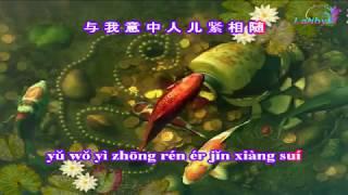 Tình Nhi Nữ - KARAOKE - 女儿情 - Beat