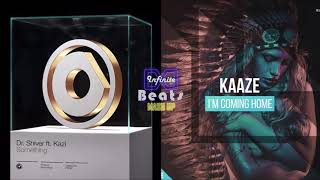 Dr. Shiver ft. Kazi - Something vs. KAAZE - I'm Coming Home (Infinite Beats Mashup)