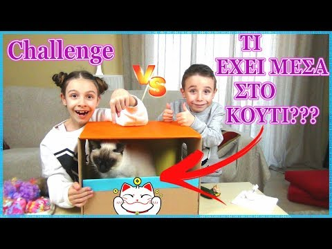 ΤΙ ΈΧΕΙ ΜΈΣΑ ΣΤΟ ΚΟΥΤΊ?Challenge!Whats in the Box/ Princess Tonia Vlog!