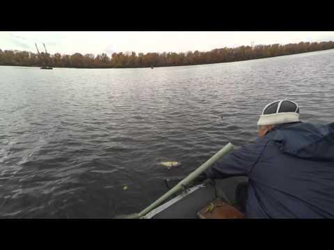 какое нормальное давление для ловли судака