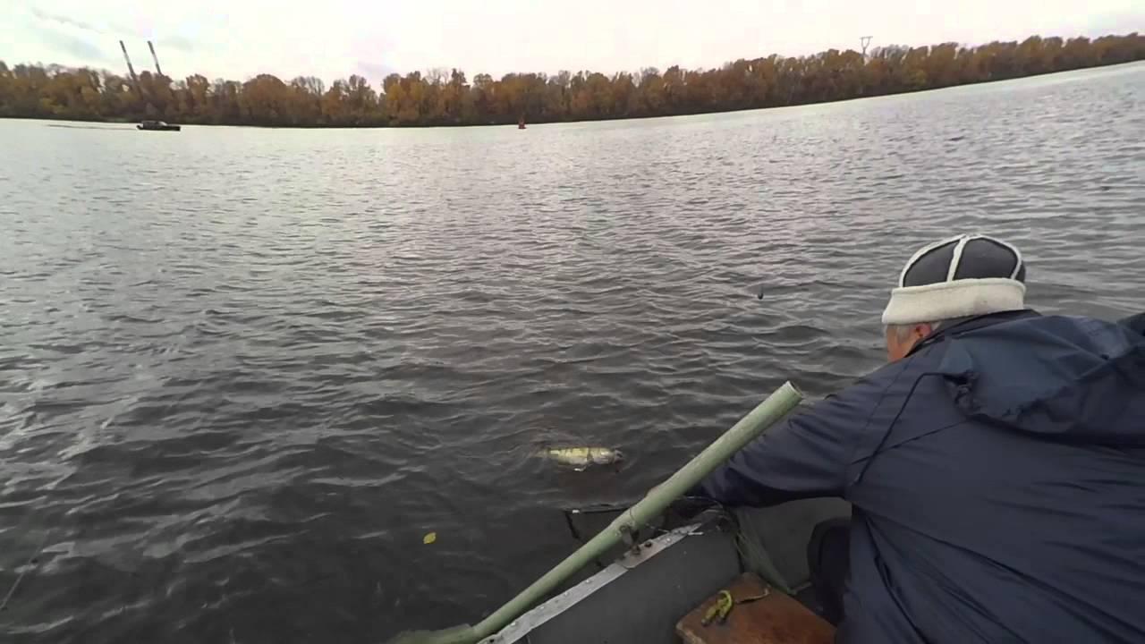 калужская рыбалка зимовальные ямы