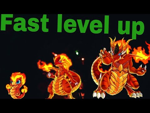 Bulu Monster | Training Acc. | Level Up Fast Without Candy