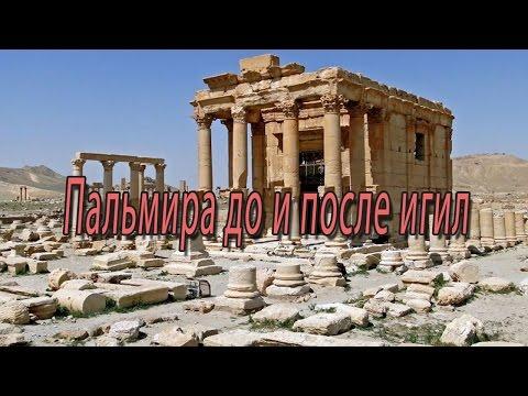 Пальмира до и после игил или как человечество лишают своей истории