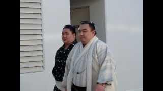 大相撲一月場所初日。 新入幕・琴勇輝の場所入り。 21歳とは思えない妙...