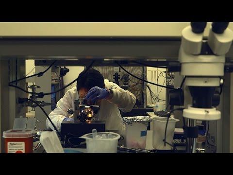 Cardiac Signaling Lab, University of California, Davis