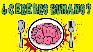 ¿Qué Pasaría si Comes un Cerebro Humano? 🧠