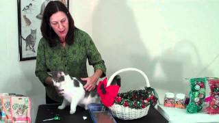 How to Make a Cat Gift Basket