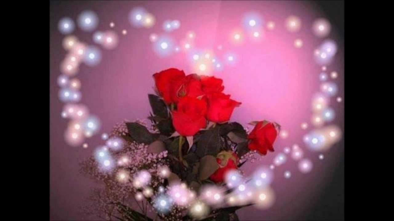 rot sind die rosen die korntaler youtube. Black Bedroom Furniture Sets. Home Design Ideas