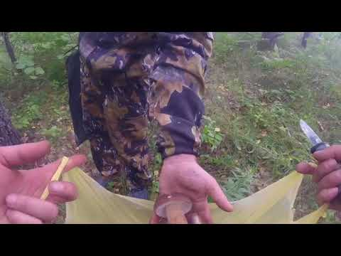 В лес за грибами, 20 вёдер за два часа (Рыльск-Хомутовка).  Часть 2