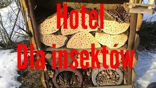 Hotel dla insektów /insecten hotel