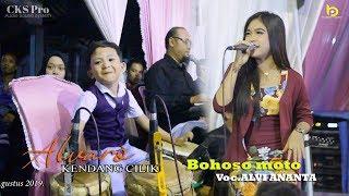 Download lagu ALVARO kendang cilik nya BAYUWANGI feat ALVI ANANTA - Bohoso moto