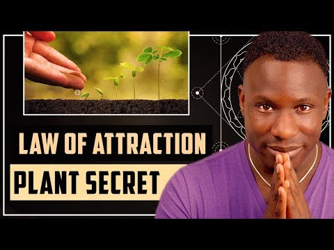 THE AMAZING LAW OF ATTRACTION PLANT SECRET II LEARN THIS!