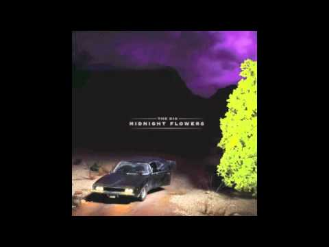 Break The Silence // The Dig // Midnight Flowers (2012)