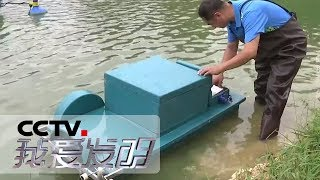 《我爱发明》 20190916 虾塘保姆| CCTV科教