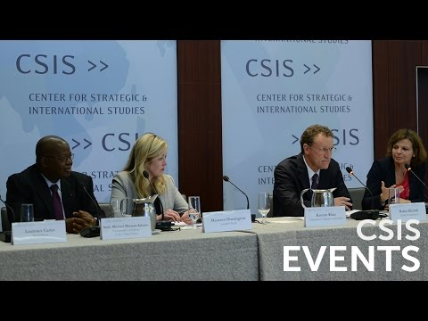Rethinking Government Capacity: Leveraging the Private Sector