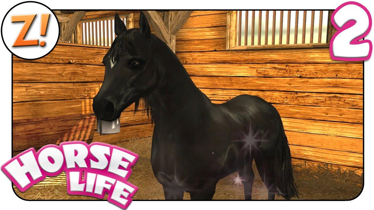 Pferde Spring Spiele