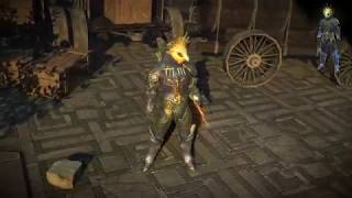 Path of Exile: Harpyon Armour Set