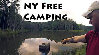 Isolated New York Stąte Forest Camping
