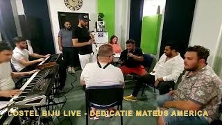 Descarca COSTEL BIJU - CINE MI-E AVEREA (Live 2020)
