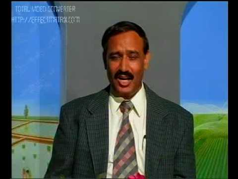 Poultry  aur livestock Feed mills Pakistan Dr.Ashraf Sahibzada