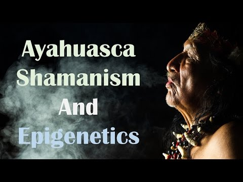 Ayahuasca Shamanism and Epigenetics