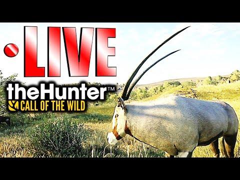 Trophy Lodge 2.0 Hunt On Vurhonga   LIVE