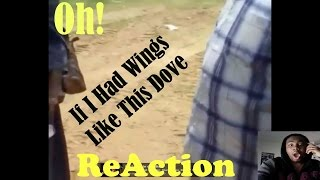 Oh If I Had Wings Like This Dove I Would Fly Away |REACTION|