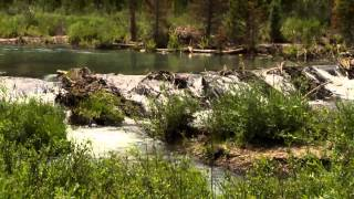 EPA Emergency Response: The Pennsylvania Mine – Montezuma, Colorado