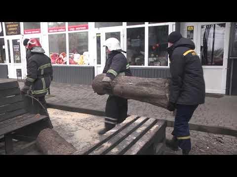 MNSKHM: У Хмельницькому рятувальники прибрали ялинку, яку вітер повалив поблизу магазинів