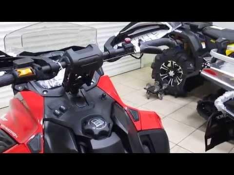 RAVE 800 E-Tec   2015 LYNX BRP