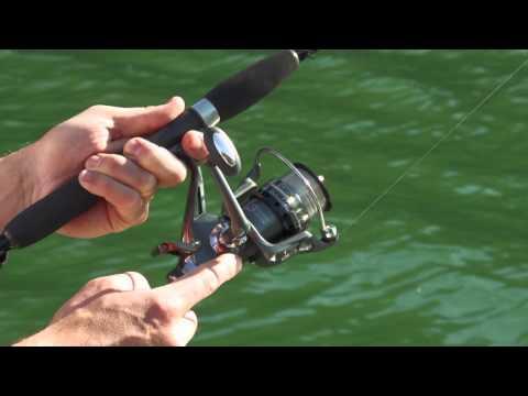 Rovex Nitrium Freespooler Fishing Reels