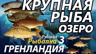 Крупная рыба Озеро РР3 Русская Рыбалка 3 Гренландия
