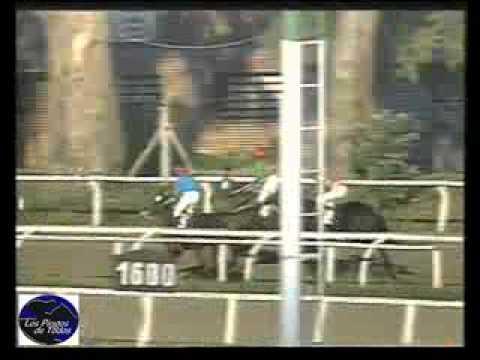 HIPODROMO LA PLATA 12/04/11 9