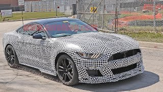 Manual 2020 Shelby GT500 Spied and Other News! Weekly Update