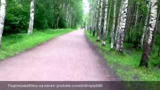 Интересный Питер - обзор парка Сосновка. смотреть онлайн в хорошем качестве бесплатно - VIDEOOO