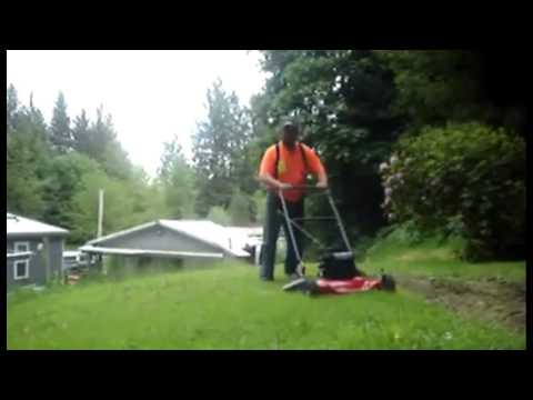 Murray Lawn Mower - test the best
